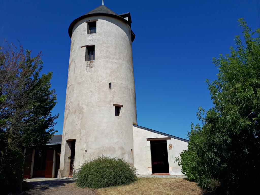 Montjean Sur Loire. Visite à 360 °.