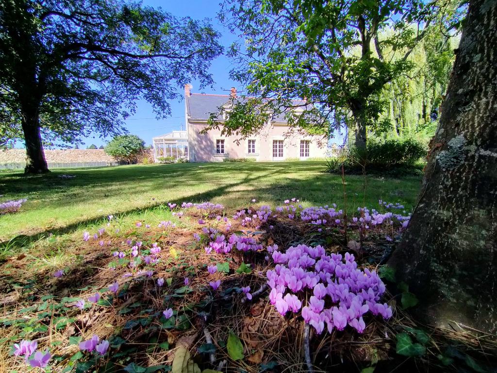 Belle Maison Ancienne à 3 minutes de Brissac