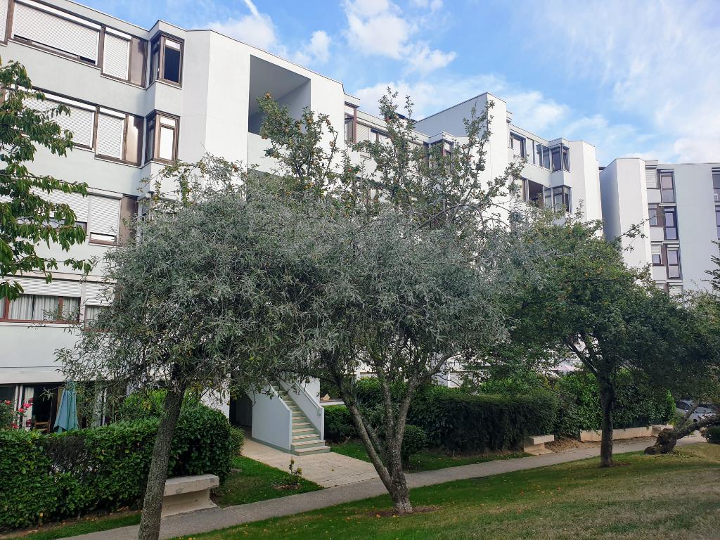 Appartement Guyancourt 5 pièce(s) 93 m2